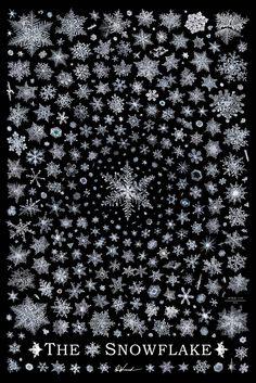 snow snowflake winter mood