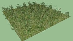 grass - 3D Warehouse