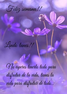 Morning Love Quotes, Good Night Quotes, Truth Quotes, Best Quotes, Spanish Greetings, Good Morning Flowers, Daily Inspiration Quotes, Inspirational Quotes, Good Night Msg