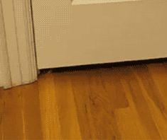 door? what door?