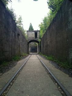 Post with 373 views. Entrance to a mortar battery in Sandy Hook, New Jersey Jersey Girl, New Jersey, Sandy Hook, Local History, Abandoned, Entrance, Sidewalk, Beach, Places