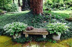 Подборка растений, с которыми ваш сад преобразится до неузнаваемости.