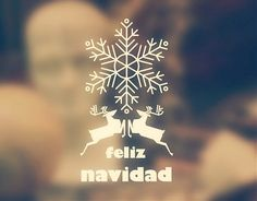 Estas navidades decora con de forma original, económica y rápida tu escaparate con este bonito vinilo navideño. #Vinilosdecorativos #escaparates #navidad