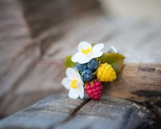Forest wealth barrette with berries: blackberry от SweetRose68