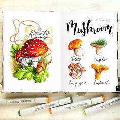 More mushrooms!  Грибная страничка как-то незаметно стала полноценным разворотом скетчбука ;)