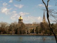 University of Notre Dame during the spring months.  #UND #SPRING #indiana