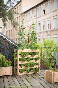 """<p style=""""text-align: left;"""">Cultiver vos fruits et légumes à la verticale. Ce potager vertical est en pin PEFC et doté de feutre géotextile qui conserve l'humidité..."""