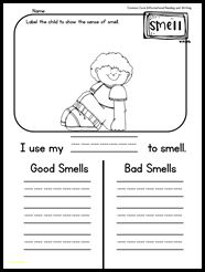 5 Senses reading pack that will have them BEGGING to read. This pack has true differentiation. Emergent readers are provided for the end of Kinder and start of first grade levels. Easy reading passages are provided for higher readers or to use mid to end of first grade. I am telling you, this pack has everything. Reading, writing, activities, and tests!