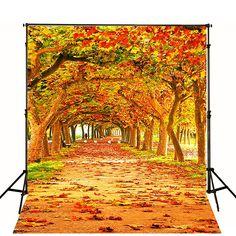 Amazon.com : 5x6.5ft Natural Photography Scenic Backdrops Autumn Leaves Beautiful Trail Photo Studio Background Backdrop WY00045 : Camera & Photo