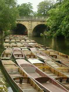 Punts in Oxford, England.