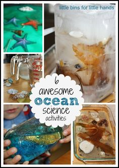 6 Awesome Ocean Science Activities (from Little Bins for Little Hands)