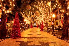 I love the holidays and its decor!