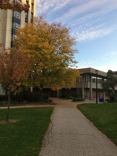 Vanier College at York University in the fall! But doesn't feel like fall yet York University, Ontario, Toronto, Sidewalk, College, Fall, Autumn, University, Fall Season
