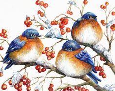 Watercolor and Ink Bluebirds in Winter: Fine Art by HootsandShoots