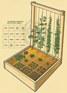 Really cool idea for a compact garden to meet all your produce needs!