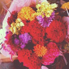 Amish Bouquets - Summer 2013