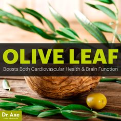 Olive leaf benefits - Dr. Axe http://www.draxe.com #health #holistic #natural