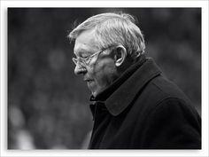 Sir Alex Ferguson Sir Alex Ferguson, Knights, My Hero, Manchester, British, People, Red, Knight, People Illustration