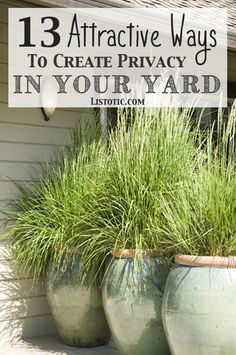 How to easily add privacy to a yard. I love the bamboo idea.