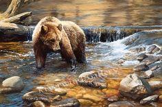 Fish Tales - bear painting by Bonnie Marris