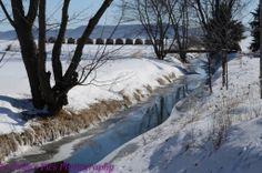 Roxbury Creek