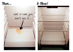 Steam Clean your fridge! Sanitizes and makes it like new!