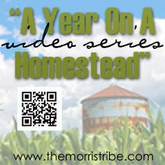 Enter to win homesteading books and videos!