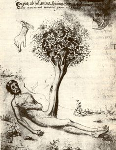 Adam as prima materia, pierced by the arrow of Mercurius Adam as prima materia, pierced by the arrow of Mercurius shows a very woody arbor philosophica growing out of a man's groin. It is from Miscellanea d'alchimia (Biblioteca Medicea Laurenziana di Firenze, Codex Ashburnham 1166, folio 16) and was reproduced in Carl Jung's Psychology and Alchemy.
