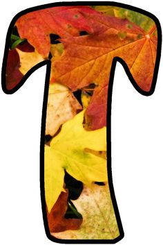 Alphabet Art, Alphabet And Numbers, The Last Leaf, Class Decoration, Tropical Party, Letter T, Children Images, Autumn Theme, Autumn Leaves