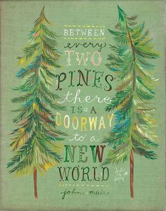Between every two pines there is a doorway to a new world. - John Muir