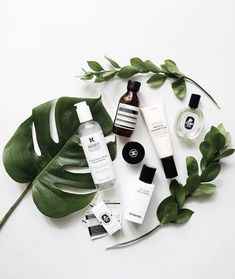 all white surface for flatlay featuring large green leaves, foliage, and skin care line with various products. Clean look