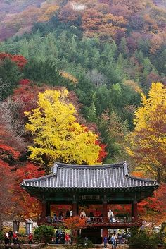 South Korea travel-bucket-list
