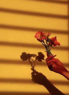 © Chloé Reulet Samsung, Art, Art Background, Kunst, Sam Son, Performing Arts