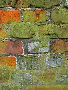 Bricks taken by Andy Maguire. I like the basic subject with the interesting texture of decaying brick with green moss. Green And Orange, Shades Of Green, Olive Green, Foto Macro, Growth And Decay, Peeling Paint, Wabi Sabi, Brick Wall, Belle Photo
