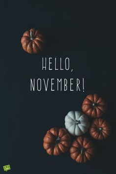 Hello November on background with pumpkins on blackboard. Hello November on background with pumpkins on blackboard.