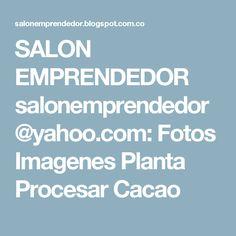 SALON EMPRENDEDOR salonemprendedor@yahoo.com: Fotos Imagenes Planta Procesar Cacao