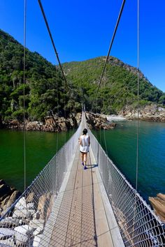 Looking to experience one of the world's most spectacular drives? Here are 5 stops on the Garden Route in South Africa you need to add to your itinerary! Port Elizabeth South Africa, Tsitsikamma National Park, Road Trip, Garden Route, Cape Town South Africa, Tours, Africa Travel, Day Trips, Strand