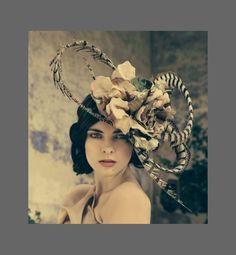 Haute Hat by Jane Taylor Millinery