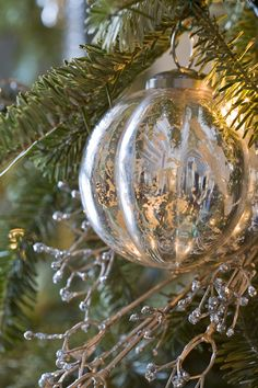 Tree trimming tip: Position lights behind clear ornaments for extra twinkle. - Traditional Home ® / Photo: Gordon Beall