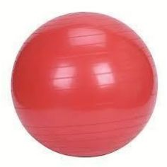 Vector X Gymnastic Ball is a great exercise alternative for any age or fitness level.
