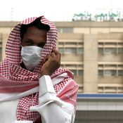 Triple Threat: Middle East Respiratory Virus And 2 Bird Flus