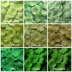 Green Silk Rose Petals 9 Shades of Green Mix and Match Colors #jade #honeydew #kiwi #celadon #greenapple #avacado #olive #green #shamrock #mint by LittleThingsFavors