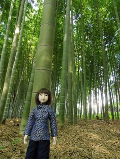 """The face, arms, and legs are bisque. It has glass eyes and human hair. The body is a cloth body, filled with cotton. 20.5 inches high.   It's made imagining a Chinese girl and nameded Seirun """"青蘭""""(Blue orchid)."""