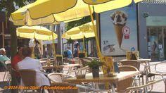 Lekker op #terras chillen! natuurlijk in #zonnigste #stad van #Nederland: #DenHelder ! |