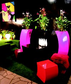 A variety of different Curvy products to create your own personal planter combination.