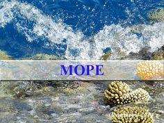 Музыка. Красное море. Релакс. Медитация