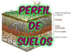 PERFIL TÉCNICO DE SUELOS