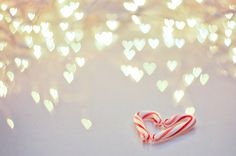 candy cane heart and bokeh Christmas Cover, Christmas Hearts, Little Christmas, Christmas Candy, All Things Christmas, Christmas Time, Merry Christmas, Christmas Ideas, Winter Things