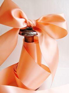 Oh my pretty peach ribbon. Perfect Peach, Peach Love, Peach Blush, Sweet Peach, Just Peachy, Coral Orange, Orange Color, Peach Aesthetic, Shades Of Peach