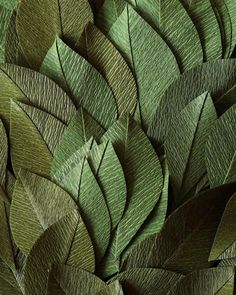 Foliage for a new wreath 🍃 Double sided German crepe paper from Crepe Paper Crafts, Paper Flowers Craft, Crepe Paper Flowers, Flower Crafts, Fabric Flowers, Fake Flowers, Diy Flowers, Paper Plants, Paper Bouquet